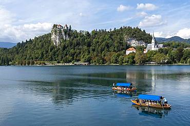 Lake Bled, with castle and church of Bled, Bled, Upper Ukraine Region, Slovenia, Europe