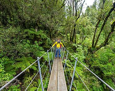 Hiker on suspension bridge in forest, Pouakai Circuit, Egmont National Park, Taranaki, North Island, New Zealand, Oceania