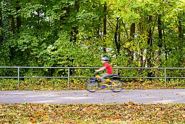 Cyclist on his way with autumnal trees, child, puller, Isarhochufer, Munich, Bavaria, Germany, Europe