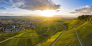 Drone shot, autumn, vineyards at Korber Kopf, Remstal near Schnait, Baden-Wuerttemberg, Germany, Europe