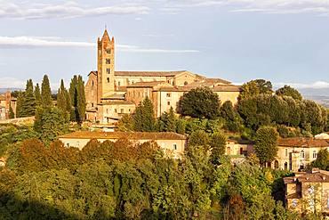 Basilica di San Clemente in Santa Maria dei Servi, Siena, Tuscany, Italy, Europe
