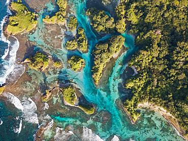 Aerial view, tropical forested islands with mangroves in the sea, Escudo de Veraguas, Panama, Central America