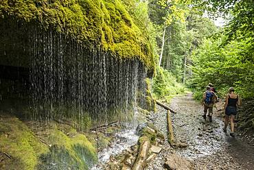 Hikers, Moss covered rocks and waterfall, Wutach gorge, Bonndorf, Baden-Wuerttemberg, Black Forest, Germany, Europe