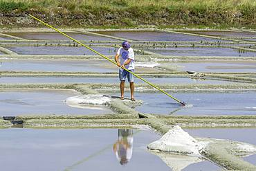 Man skimming salt, Salines de Guerande, Guerande, Departement Loire-Atlantique, France, Europe