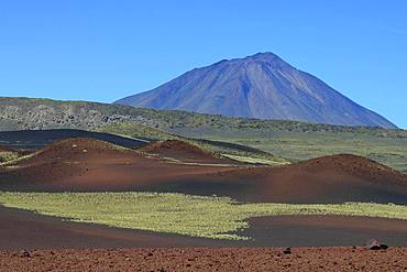 Volcanic lunar landscape, Payun volcano in the background, Reserva La Payunia, Mendoza province, Argentina, South America