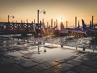 Goldeln at St Mark's Square at sunrise, Venice, Italy, Europe