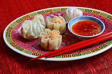 Dim Sum, filled dumplings on plate with red chopsticks and chilli sauce, Germany, Europe