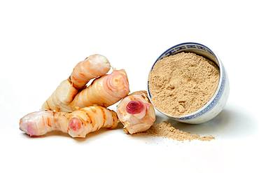 Galangal roots and galangal powder in bowl, Germany, Europe