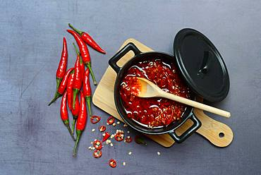 Crushed chillies pickled in oil in pot with wooden spoon, Germany, Europe