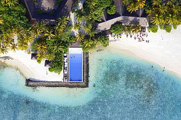 Sandy beach beach with swimming pool and beach bar, Summer Island, North Male Atoll, Maldives, Asia