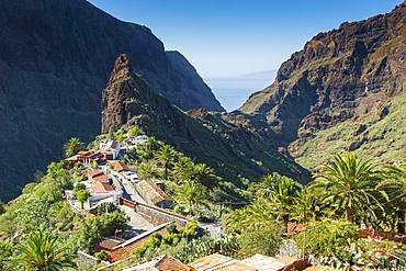 Mountain village Masca, Teno Mountains, Tenerife, Canary Islands, Spain, Europe