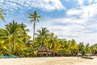 Sandy beach beach with palm trees, Andilana Beach, Nosy Be Island, Madagascar, Africa