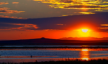 Sunrise over Tsagaan Lake, Terchiin Tsagaan Nuur National Park, Bulgan-Aimag, Mongolia, Asia