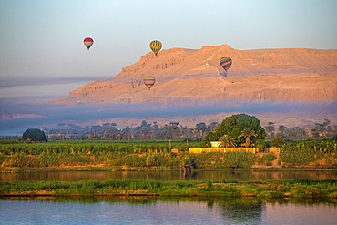 Rising hot air balloons above the temple of Hatshepsut on the banks of the Nile, near Luxor, Egypt, Africa