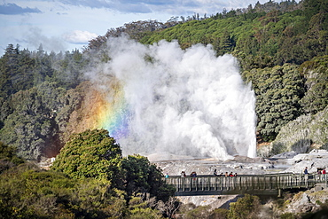 Tourists on bridge, view of erupting Pohutu Geyser with rainbow, Te Puia, Whakarewarewa, Rotorua, Bay of Plenty, New Zealand, Oceania