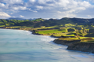 Castlepoint coastline, mountain landscape with green hills and pasture land, Masterton, Wellington, New Zealand, Oceania
