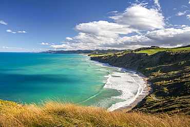 Castlepoint coastline, hilly landscape, Masterton, Wellington, New Zealand, Oceania