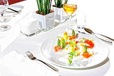 Garnish salmon fillet, served on white cover, main course, Germany, Europe