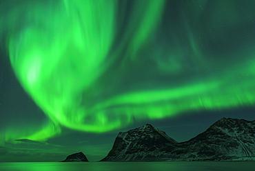 Northern Lights (Aurora borealis), Haukland Beach, Lofoten, Norway, Europe