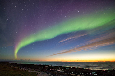 Northern Lights (Aurora borealis), Latravik Bay, near Latrabjarg, Westfjords, Iceland, Europe