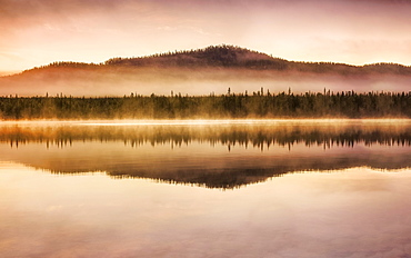 Autumnal fog atmosphere on the lake shore in the evening light, Jokkmokk, Norrbottens laen, Sweden, Europe
