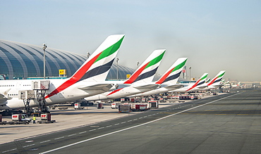 Aircraft tail units of several Airbus A380 of the airline Emirates, aircraft lined up at the terminal, Dubai Airport, Dubai, United Arab Emirates, Asia