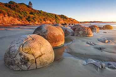 Moeraki Bolders, round rock balls, geological concretion, Hampden, Otago, New Zealand, Oceania