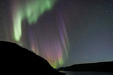 Northern Lights over Arnarfjoerour, Northwest Iceland, Iceland, Europe