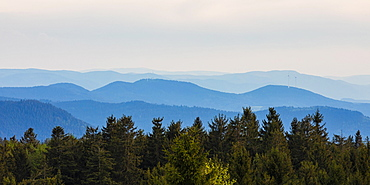 View from Schliffkopf, wooded hilly landscape, Black Forest National Park, Northern Black Forest, Black Forest, Baden-Wuerttemberg, Germany, Europe