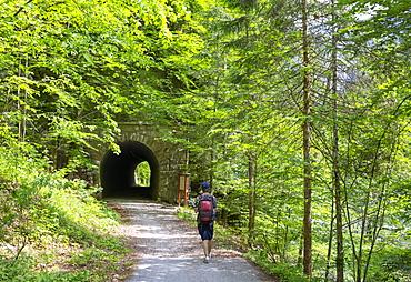 Koppental hiking trail from Obertraun to Bad Aussee, river Koppentraun, railway tunnel of the old route, Salzkammergut, Upper Austria, Austria, Europe