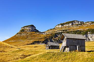Braeuningalm on the Loser Plateau, Totes Gebirge, Altaussee, Aussseland, Salzkammergut, Styria, Austria, Europe