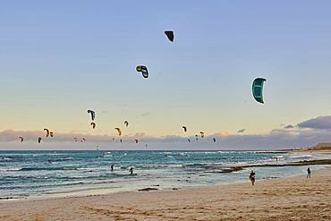 Many kitesurfers on the beach of Playa del Pozo, Fuerteventura, Canary Islands, Spain, Europe