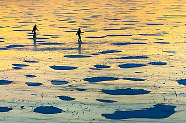 Skating on the ice of the Duemmer in winter at sunset, Lembruch, Lower Saxony, Germany, Europe