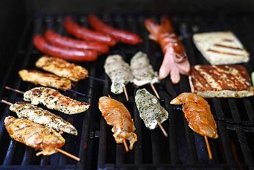 Barbecue on grill, Karsruhe, Baden-Wuerttemberg, Germany, Europe