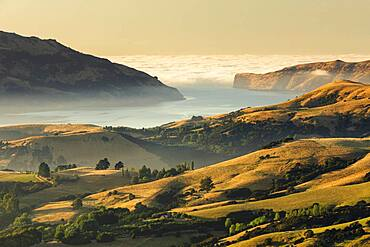 Sea fog at sunrise, Oceania, Banks Peninsula, Canterbury, South Island, New Zealand, Oceania