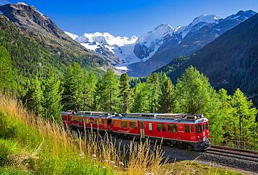 Train of the Bernina line over the Morteratsch valley with Bellavista, Piz Bernina and Morteratsch glacier, Pontresina, Bernina Alps, Upper Engadine, Engadine, Grisons, Switzerland, Europe