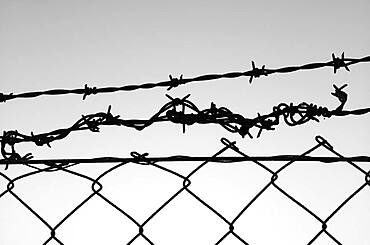 Barbed wire fence in front of the sky, symbolic picture of captivity, Stuttgart, Baden-Wuerttemberg, Germany, Europe