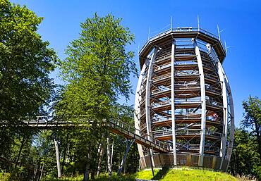 Observation tower at the tree top path Salzkammergut am Gruenberg, Gmunden, Salzkammergut, Upper Austria, Austria, Europe