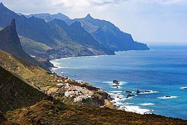 Coastal road with cliffs near the village of Almaciga, Anaga Mountains, Tenerife, Canary Island, Spain, Europe