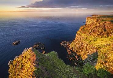 Rocky coast in the evening light, Langanesbyggo, Norourland eystra, Iceland, Europe