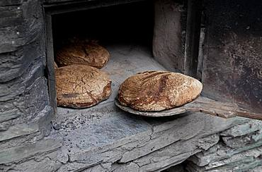 Sourdough bread from the wood-burning oven, Kalchkendlalm, Rauris, Bucheben, Austria, Europe