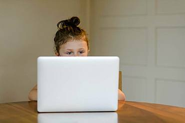 Child sitting at the laptop