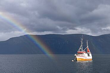 Fishing boat in fjord with rainbow, Lyngseidet, Lyngenfjord, Troms og Finnmark, Norway, Europe