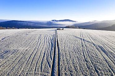 Field path and lanes on field covered with hoarfrost, structure, drone shot, aerial view, Mondseeland, Salzkammergut, Upper Austria, Austria, Europe