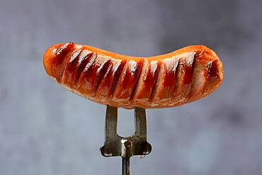 Grilled sausage on skewer, grill sausage, Germany, Europe