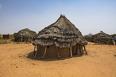 Traditional mud huts, Hausa village, south-Niger, Niger, Africa