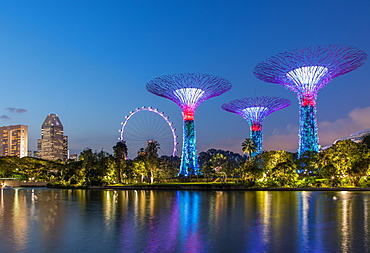 Supertrees at night, Supertree Grove, Gardens by the Bay, Singapore, Asia