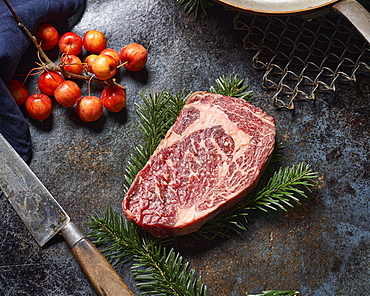 Grained piece of beef, a so-called entrecote, lies on a fir branch decorated on a blue-black shimmering iron plate