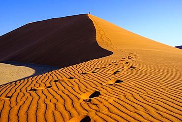 People climb the Dune 45, Sossusvlei, Namibia, Africa