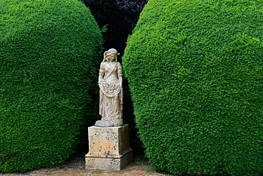 Statue and yew tree in topiary, England, Great Britain